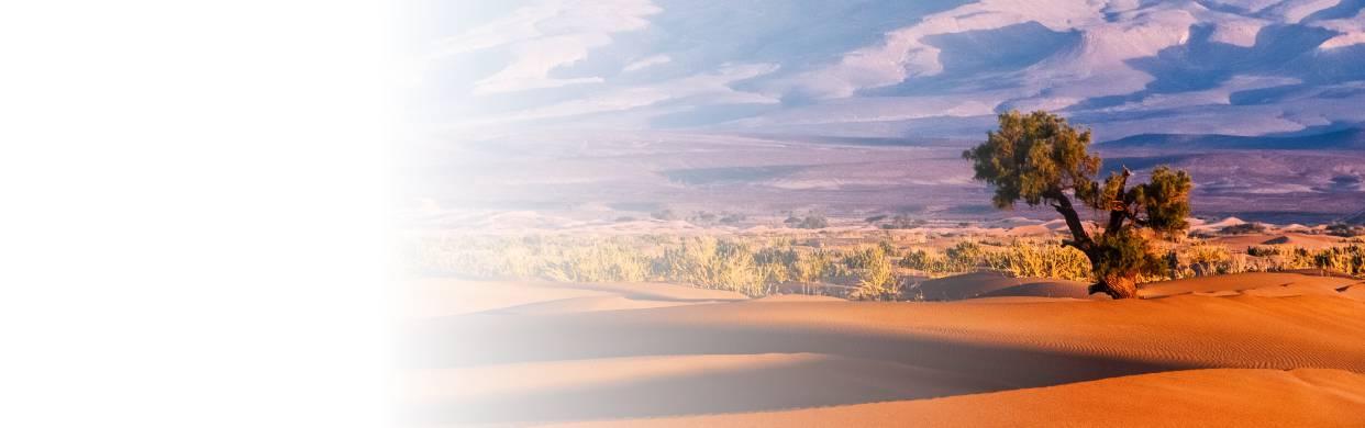 Afrique du Nord